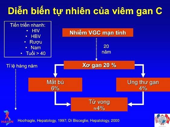 Kết quả hình ảnh cho Viêm Gan và Ung Thư Gan.